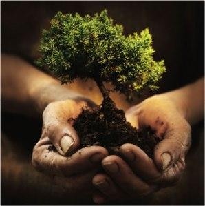 planting-hands